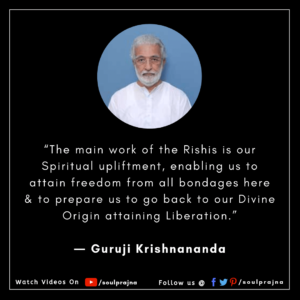 Guruji Krishnananda Best Quote - SoulPrajna