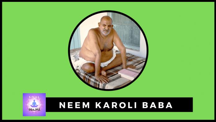 Neem Karoli Baba books