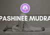 PASHINEE MUDRA