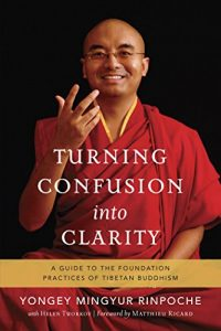 Turning Confusion into Clarity - Mingyur Rinpoche - SoulPrajna
