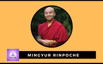 mingyur rinpoche books