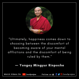 Mingyur Rinpoche Best Quote